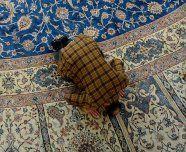 Islamgesetz: Kritik der IGGiÖ offiziell