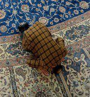 Begutachtungsfrist für Islamgesetz abgelaufen