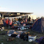Live: Flüchtlingssituation in Heiligenkreuz droht zu eskalieren