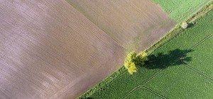 Sinkende Qualität der Böden verursacht Milliardenkosten