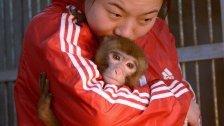 Chinesen begrüßendasJahr des Affen