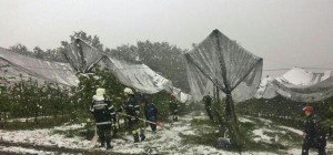 Mehr als 200 Mio. Euro Gesamtschaden durch neue Schneefälle