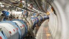 """""""Weltmaschine"""" CERN von Marder lahmgelegt"""