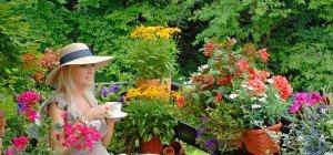 Blumenerde im Test: Enorme Preisunterschiede, aber keine Qualitätsunterschiede