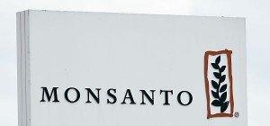 Monsanto lehnte Bayer-Offerte ab, aber offen für Gespräche