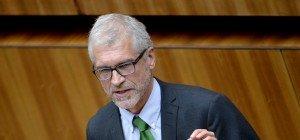 Rechtsextremismus-Bericht: Grüne warnen vor Einzeltäter-Denken