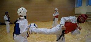 Hapkido-Training und Selbstverteidigungsworkshop