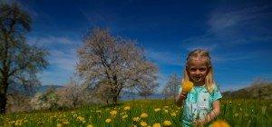 Am Donnerstag kommt der Frühling zurück