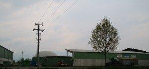 Biogasabfälle illegal auf Ländle-Wiesen ausgebracht?
