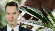 Cannabis-FreigabefürErwachsene?