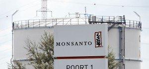 Monsantos Übernahmepoker mit Bayer dauert an