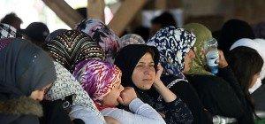 Wieder steigende Flüchtlingszahlen auf der Balkanroute