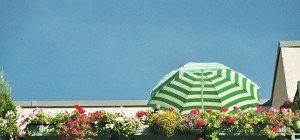 Sommer auf Balkonien: Jeder vierte Wiener verbringt seinen Urlaub daheim