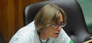 Grasser-Anklage – Moser will mehr Rechte für Rechnungshof