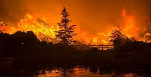 Riesiger Waldbrand in Kalifornien