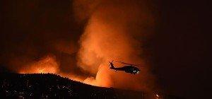 Waldbrände in Kalifornien zerstören Zehntausende Hektar Land