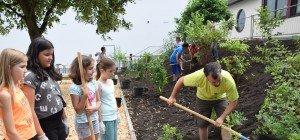 Projekttag für grünes Klassenzimmer