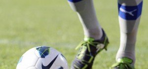 LIVE: SC Wiener Neustadt gegen FC Liefering im Erste Liga-Ticker