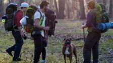 Campen mit Hund: Das sollte man beachten