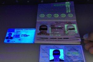 Grenzwächter stellen im Rheintal in einer Woche 19 gefälschte Dokumente fest