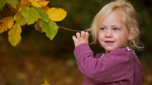 Zehn gute Gründe um sich jetzt schon auf den Herbst zu freuen