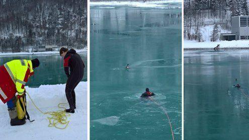 Enten in Stausee festgefroren: Eine heldenhafte Tierrettung