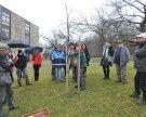 Winter-Obstbaumschnittkurs & Tipps zur Sortenauswahl