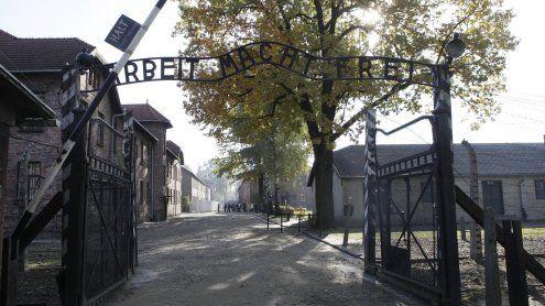 Schaf geschlachtet und entblöst: Absurder Vorfall in Auschwitz