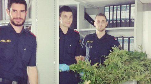 Vorarlbergs Polizei zeigt sich mit Hanfpflanzen auf Facebook